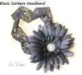 Black Gerbera Headband
