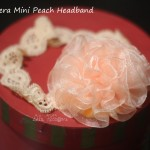 shiera mini peach 2_30